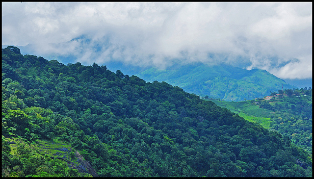Misty Mountains Munnar