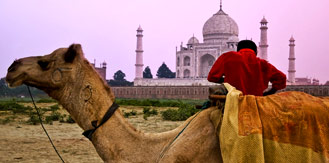 Golden Triangle Travel